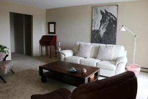 1 Bedroom Apartment for Rent in Leamington