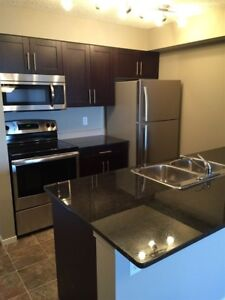 Brand new condo in SW for sale today