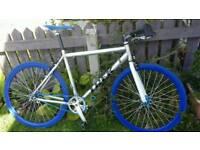 Custom track road fixie bike