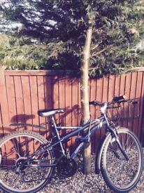 Second hand bike with complete equipment (basket, helmet, lock, new lights)
