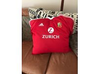Homemade cushion from Lions Replica Jersey