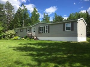 AWESOME MINI HOME IN BLACKVILLE!