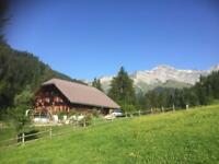 Fantastic Swiss Chalet to rent. Panoramic views. Sleeps 10-12