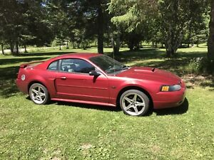2003 Ford Mustang GT V8 4,6 litres