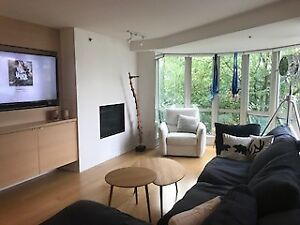 Vancouver Seawall Furnished 2Br/2Bath New Reno