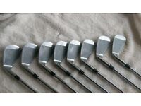 full set of hippo irons , putter and bag