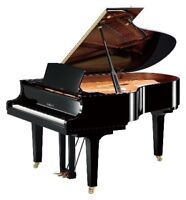 Affordable piano lessons! (Killarney neighbourhood)