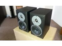 Dynaudio DM 2/6 Speakers - £500 Speakers, WHF 5 Stars