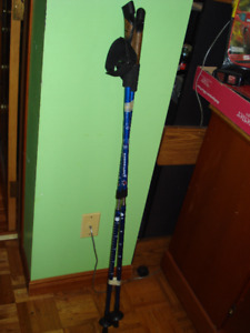 ANTISHOCK HIKING POLES-in great condition