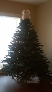 Christmas Tree (approx. 9 foot height )