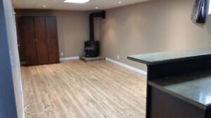 Newly renovated 1 bedroom basement apartment for rent (Waterloo)