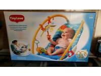 Tiny Love gymini bouncy chair