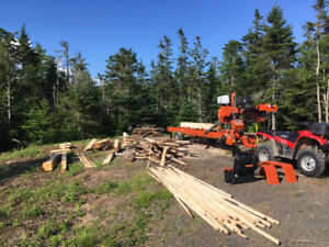 Portable sawmill and rough cut lumber