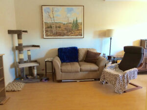 Bright & Updated 1 Bedroom Apartment in St. James