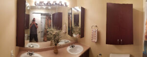 complete bathroom cabinet with lights