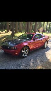 5.0 Mustang