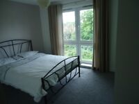 Immaculate Two Bedroom - Bromley - BR1