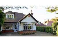 House to let in muscliff lane