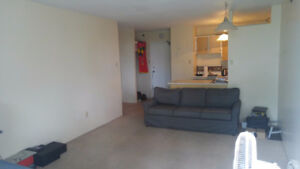 1 Bedroom Southpoint Apartment $900 mo