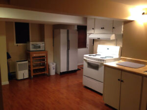 EVERYTHING Included 1 Bedroom Apt - 10 Min Walk to MUN
