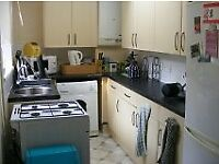 3 BEDROOM HOUSE CROOKES, S10-Professionals/Students 2017/18