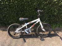 BMX Bike with Stunt Pegs