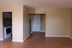 St Catharines 3 Bedroom Apartment for Rent: Regular Activities!