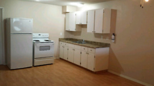 LARGE 3 bedroom daylight suite!