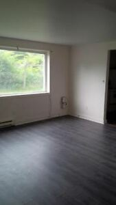 Three bedroom basement apartment in a Triplex