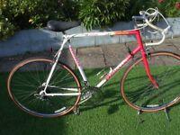 vintage emmelle road bike