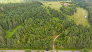 Approximately 43 acres of land in Stanley Bridge