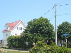 2 apartments located Parlee beach