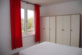 Lovely 2 bedroom flat for rent