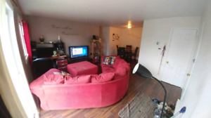 Chambre a louer a longueuil animal lovers only 420