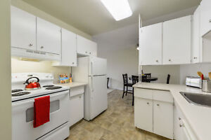 Great 1 bedroom apartments available now! Edmonton Edmonton Area image 2