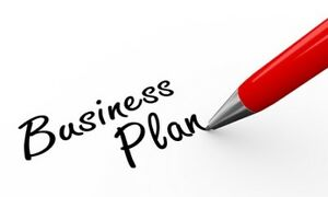 Business Plan Writing Services   BrainHive Business Planning