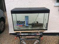 Fluval complete tropical aquarium fish tank set up