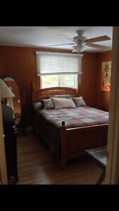Looking for Professional Roommate in my Home- Available