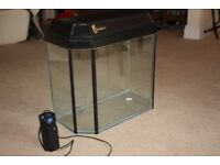 Immaculate fish tank and pump