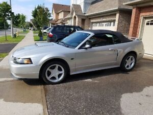 2001 mustang GT convertable