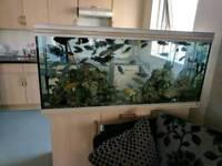Fully set up aquarium