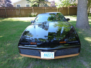 """1982 Trans Am  """"New Lower Price"""""""