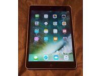 iPad mini 2 Space Grey