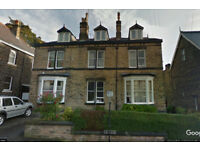 Good Sized Well Maintained Fully Furnished Bedsit Ecclesall Road Sheffield