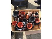 Flowers pots plastic around 100 free to collector.
