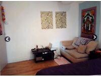Friendly well located Bermondsey flat share