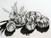 Drawing with Pen and Ink