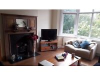 Small room to rent with double bed in Raynes Park - 6 mins from station - must see!