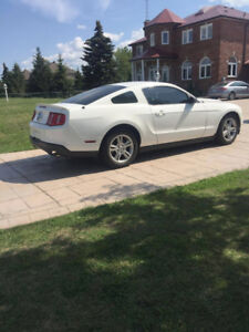 WHITE 2010 MUSTANG 51,200 KM EXTRA RIMS - CERTIFIED HEAD TURNER!