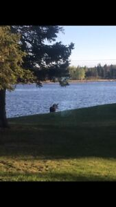 Waterfront Shediac River for Rent